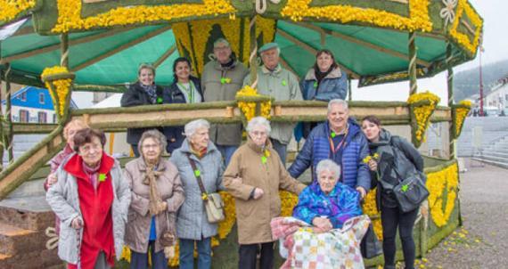 RC Saint Dié : Jurnée jonquilles pour les anciens